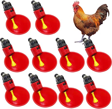 Screw On Base Poultry Chickens Roosters Hens Waterer Durable Gallon Lime Green