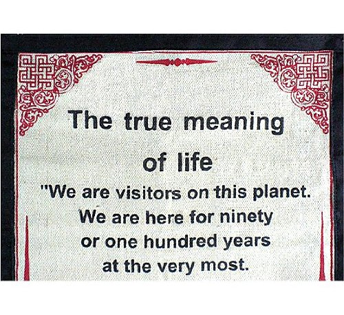Amazon DALAI LAMA QUOTES Cotton Canvas Scroll The True Interesting What Is The Meaning Of Life Quotes
