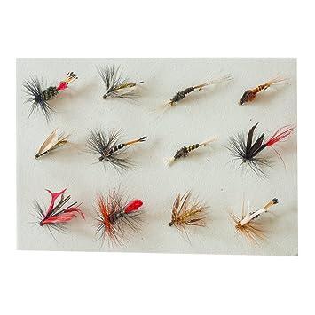 10 Stück Fliegenfischen Fliegen Mehrfarbig Trout Fliegenfischen Fliegen