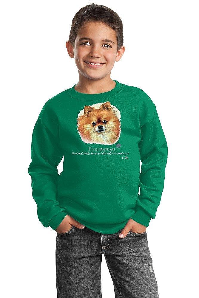 Pomeranian Youth Sweatshirt by Howard Robinson 20109