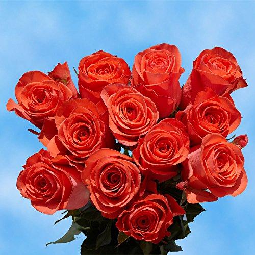 Todays Fresh Cut Heart (GlobalRose Fresh Cut Roses 50 Dark Orange Roses)