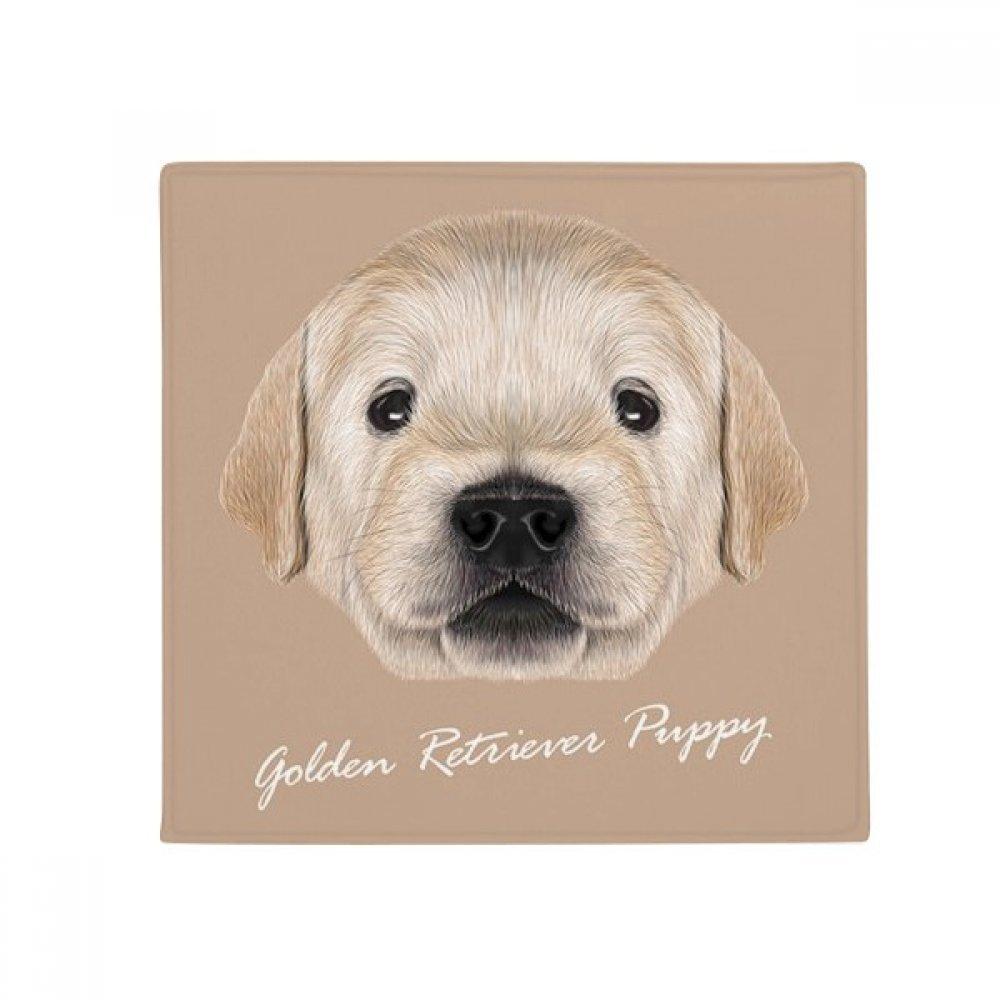 DIYthinker Trained golden Retriever Puppy Dog Animal Anti-Slip Floor Pet Mat Square Home Kitchen Door 80Cm Gift