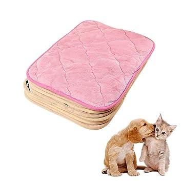 Crewell Manta para Mascota, Cálida, de Tela Coral, Suave, para Gatos, Perros, Dormir, Gatitos, Cachorros, Mantas de Cama, Small: Amazon.es: Hogar