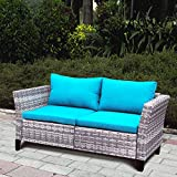 Indoor Outdoor Wicker Loveseat for Living Room, Patio Sectional Sofa Loveseat Bench Sofa WIith Cushion, Aluminum Fram, Long Lasting, UV/Fade/Water Resistant (Blue)