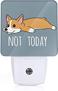 Not Today Corgi Dog Print Led Smart/Automatic Dusk to Dawn Sensor Night Light (Plug-in) for Adult Indoor Bedroom Bathroom Decorative