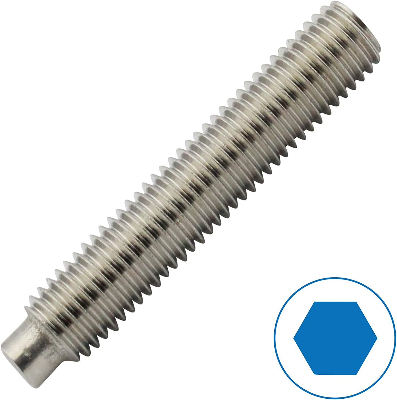 ISK Gewindestifte Madenschrauben Gr/ö/ße M6 x 40 mm nach DIN 915 mit Innensechskant VPE: 10 St/ück und Zapfen aus Edelstahl A2 // V2A D2D