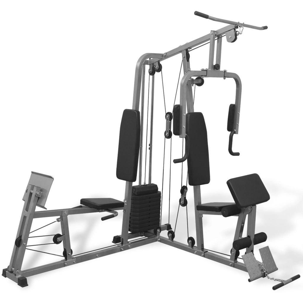 Festnight Multifunktionale Fitnessstation Fitnessgerät Kraftstation Stahlrahmen Trainingsgeräte 196 x 180 x 208 cm