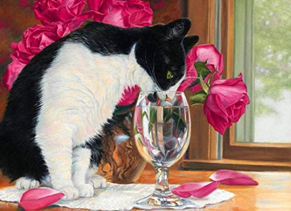 QHZCJ Pintura al óleo por números Copas de Vino y Gatos Bricolaje Pintura por números Pintura de la Lona Living Room Arte de la Pared decoración del hogar Regalo -16 x 20