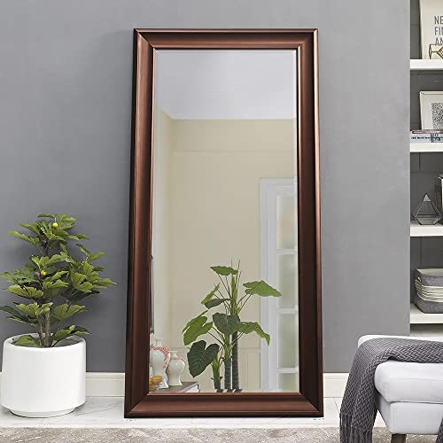 Naomi Home Framed Floor Mirror Oil Rubbed Bronze/65″ x 31″