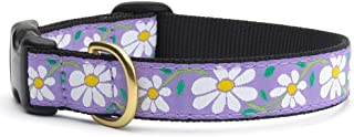 product image for Up Country Daisy Collar - Medium