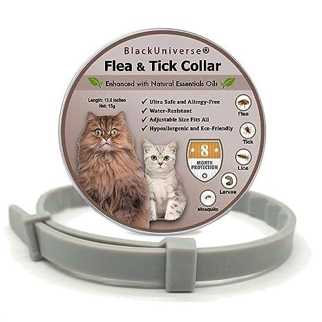 Collar Para Perros Y Gatos, Collar De Protección De 8 Meses ...