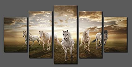 Canvas Prints Sk002 Modern Canvas Wall Art White Horse Stretched and Framed Ready to & Amazon.com: Canvas Prints Sk002 Modern Canvas Wall Art White Horse ...