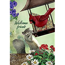 JoyPlus Welcome Cardinal Bird & Squirrel Garden Flag - Vertical Double Sided Spring Summer Cute Decorative Rustic/Farm House Small Decor Flags Set for Indoor & Outdoor Decoration, 12 X 18 Inch by