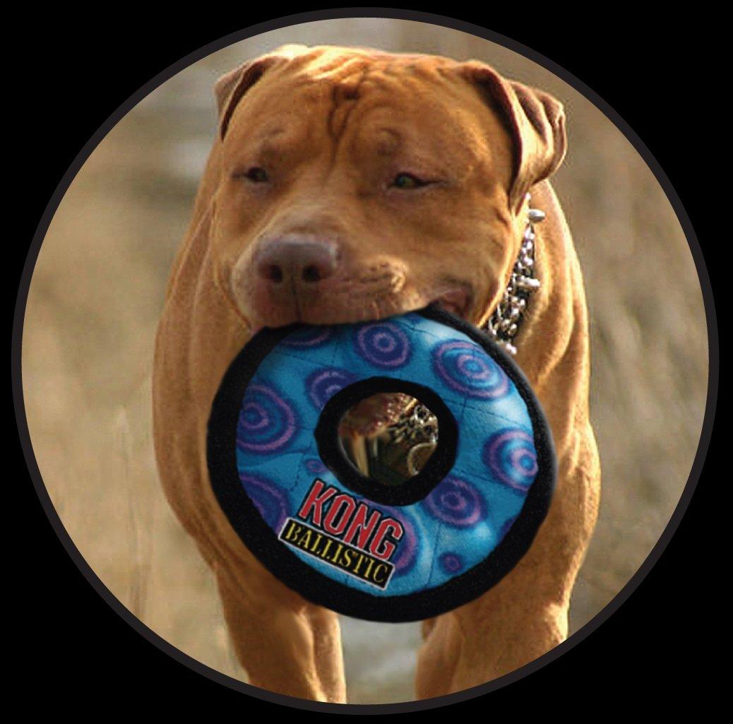 Kong Ballistic Tug Dog Toy: Kong Ballistic Ring Dog Toy