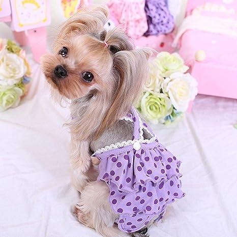 Lembeauty - Pañales menstruales para Mascotas (Talla pequeña, Talla Mediana, para Perros y