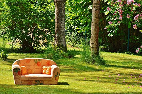 Home Comforts Peel-n-Stick Poster of Chill Out Couch Meadow Sun Rest Nature Sofa Poster 24x16 Adhesive Sticker Poster Print