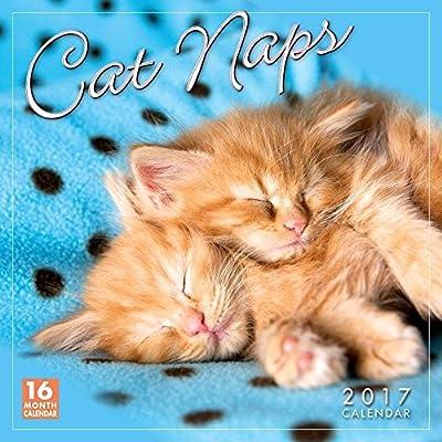 Cat Naps 2017 Wall Calendar