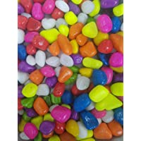 Devu Parbat Stone Glossy and Decorative Garden and Glass Pebbles (Multicolour, 1 Kg)
