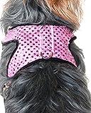 Anima Pink Sparkle Harness and Leash Set, Medium, My Pet Supplies