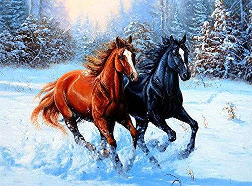 DIY 5D Diamond Painting Kit Embroidery Rhinestone Cross Stitch Arts for Craft Home Wall Decor?Dark Horse Brown Horse 30 x 40 cm / 11.87 x 15.75 inches