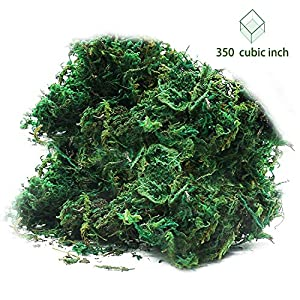 Timoo Fake Moss for Plants, Artificial Green Moss for Flower Plant Garden Lawn Crafts Wedding Decoration 89