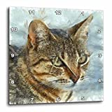 3dRose Taiche – Pencil Drawing – Tabby Cat – Stunning Tabby Cat Close Up Portrait – 15×15 Wall Clock (dpp_260802_3) Review