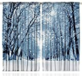 Farmhouse Decor Snowy Trees Wildlife Woodsy Country Scenery Forest Frosty Polar Winter Park Jungle Icy Rare Wintertime Design View for Bedroom Living Kids Room Curtains 2 Panels Set, White Gray Black