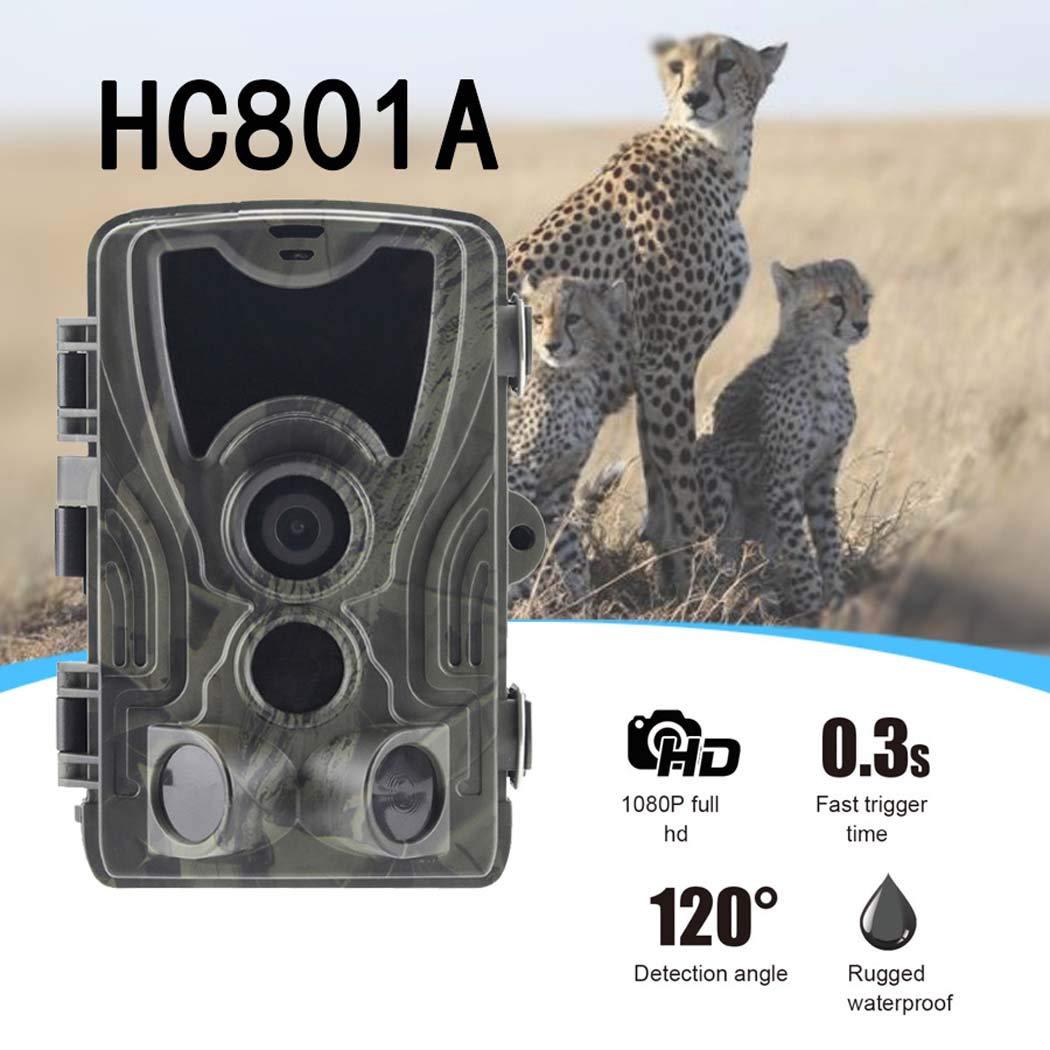 Envío y cambio gratis. GGPUS Trail Game Camera 16MP con con con Night Vision Motion, Cámara de Juego Impermeable IP66, Cámara de Exploración Activada para Monitoreo de Vida Silvestre, 0.3Trigger Speed  60% de descuento