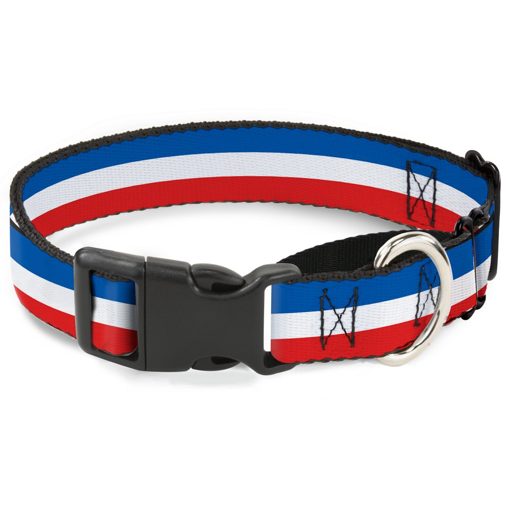 Buckle-Down MGC-W31952-M Stripes bluee White Red Martingale Dog Collar, Medium