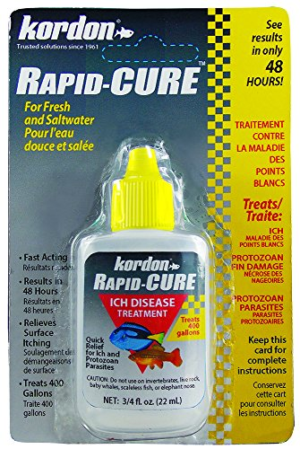 KORDON Rapid CURE  # 37911  Ich & Parasite Treatment,  0.75 Ounce