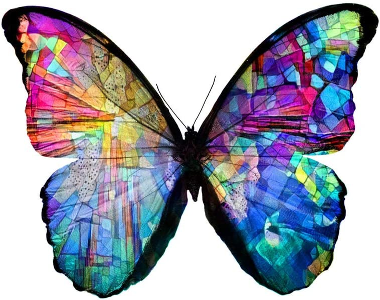 Beautiful Mosaic Multicolored Butterfly Artistic Monarch Insect Stained Glass Insect Art Cool Wall Decor Art Print Poster 12x18