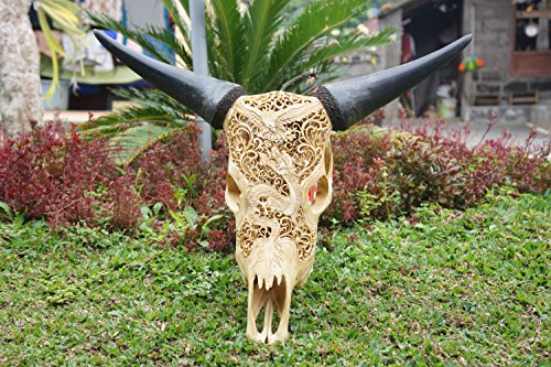 - Brown Carved Cow Skull With Horns, Hand Carved Animal Skull, Dragon Design