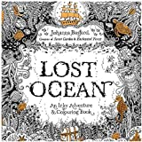 Secret Garden serie LOST OCEAN adult coloring colouring books For Relieve Stress Kill Time Painting Drawing Book with 24 color pencil