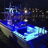 Lumitec Caprera2 LED Spreader and Deck Flood