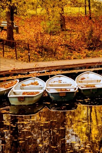 Rowboats on the Lake on an Autumn Afternoon Journal: 150 Page Lined Notebook/Diary
