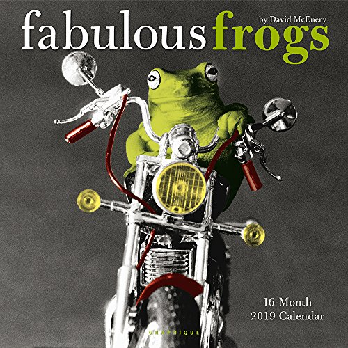 Graphique Fabulous Frogs Wall Calendar, 16-Month 2019 Wall Calendar with Iconic David McEnery Photographs, 3 Languages & Major Holidays, 2019 Calendar, 12