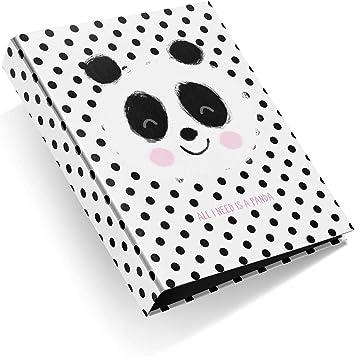 Miquelrius - Pack con 2 carpetas cartón 4 anillas de 40 mm A4 Jordi Labanda Panda Topos: Amazon.es: Oficina y papelería