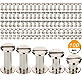 #3: TecUnite 100 Pieces Silvery Chicago Screws Metal Screw Posts Nail Rivet Chicago Button for Leather Bookbinding Crafts, 1/4, 3/8, 1/2, 9/16 and 11/16 Inches
