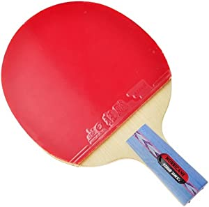 DHS HURRICANE-I Tournament Table Tennis Racket Set, Ping Pong Paddle, Penhold Racquet with a Landson Wrist Support