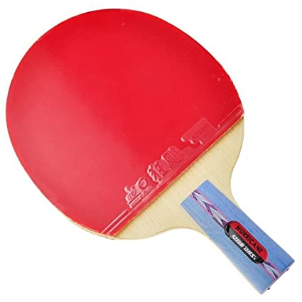DHS HURRICANE-I Tournament Table Tennis Racket (Penhold)  sc 1 st  Amazon.com & Amazon.com : DHS HURRICANE-I Tournament Table Tennis Racket (Penhold ...