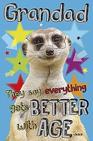 Meerkat Grandad Birthday Card Amazon Electronics
