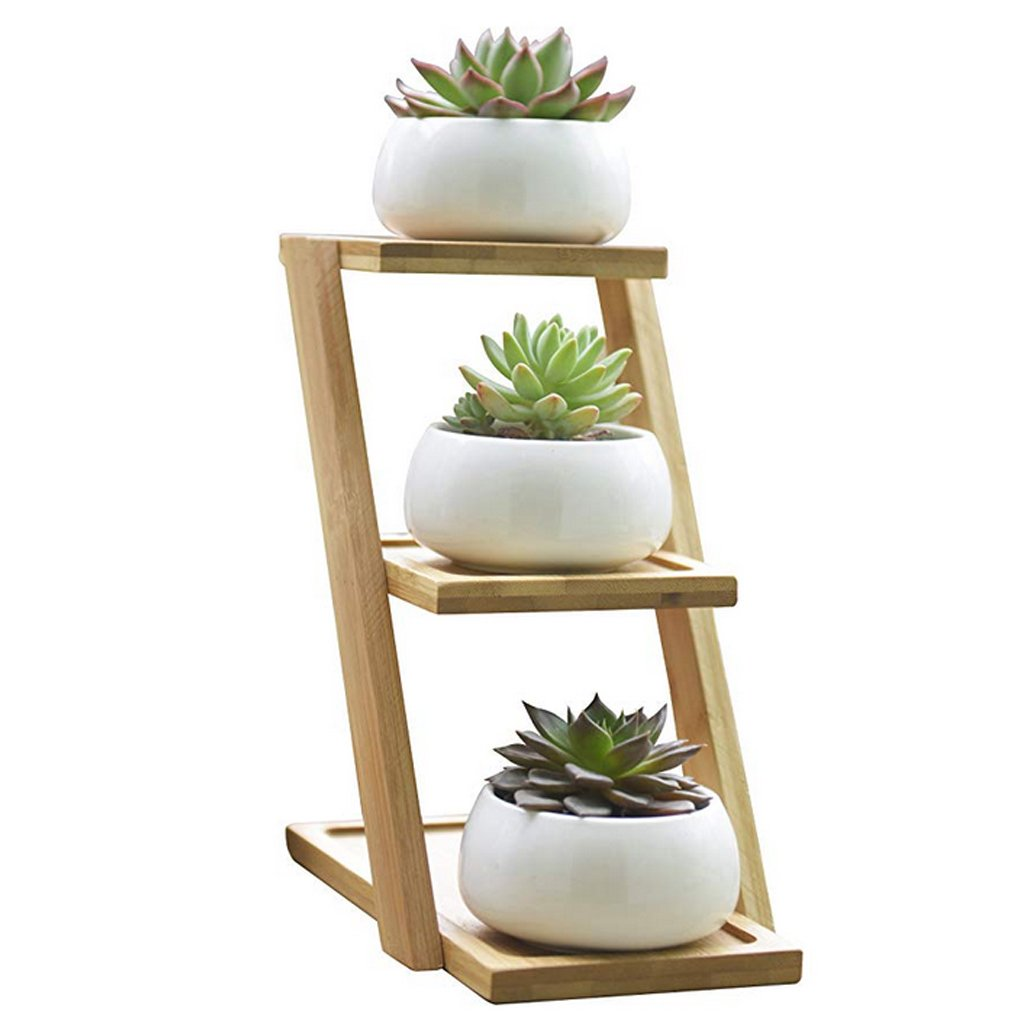 MuLuo Small Round White Ceramic Succulent Plant Pot Cactus Planter for Succulent Plants with Bamboo Tray for Room Decoration by MuLuo (Image #1)