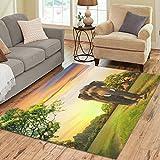 InterestPrint Elephant on Sunset Area Rug Carpet 7 x 5 Feet, Indian Africa Animal Modern Floor Rugs Mat for Office Home Living Dining Room Decoration