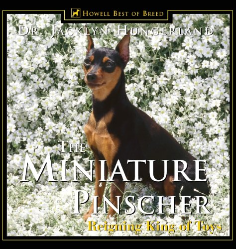 (The Miniature Pinscher: Reigning King of Toys)