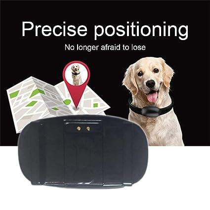 Mini Localizador de GPS Localizador en Tiempo Real para niños Mascotas Gatos Animal Collar de Perro Rastreo Valla electrónica Ubicación Rastreo Impermeable: ...