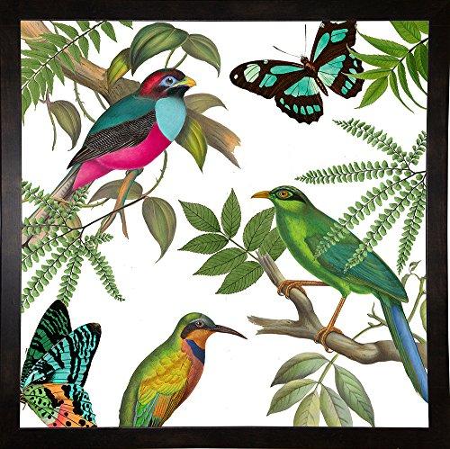 frame usa Walking On Air II Impresión enmarcada 76.2x 76.2cm por color Panadería, 30x 30, asequible, Negro, Mediano