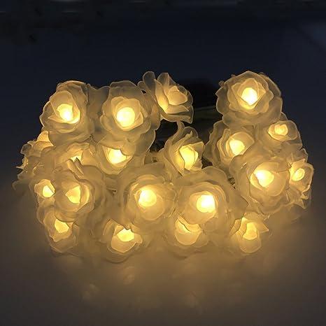 Liquidación de venta. Guirnalda de luces LEEDY con 20 luces ...