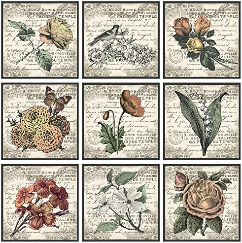 The Stupell Home D cor Collection French Botanical Illustrations 9 pc Wall Art Set