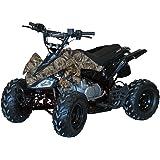 Coleman Powersports AT125-B 125cc Four Wheeler Quad ATV