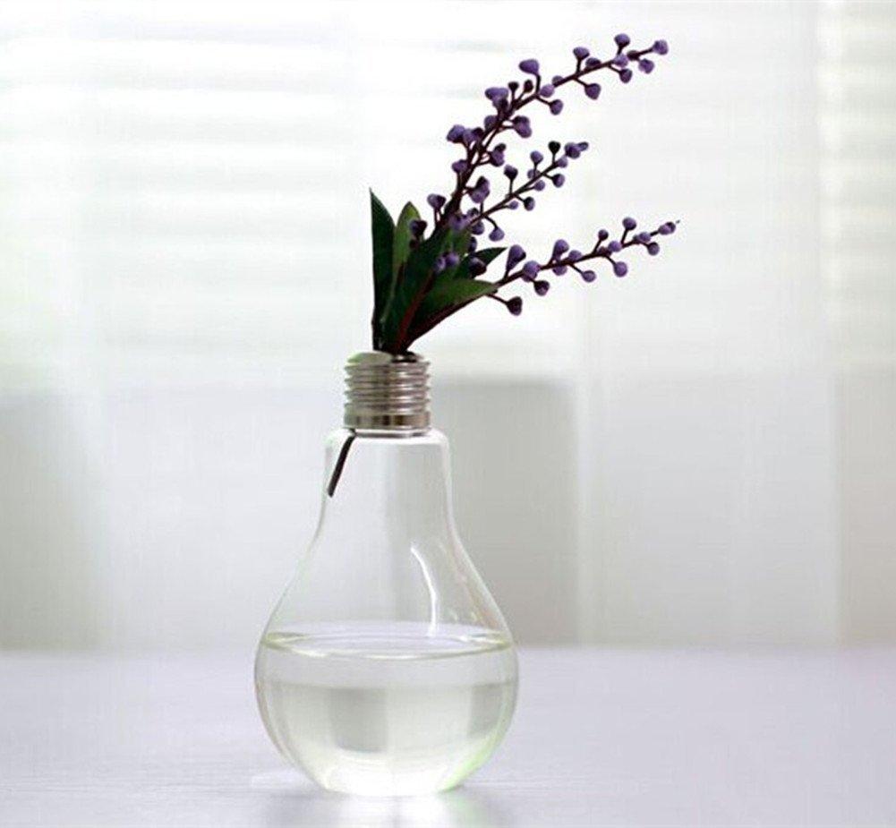 Cdet 1PC Vase Ampoule en Verre Transparent Style de Mode D/écoration Accueil//Terrarium Succulent Planter Conteneur//Plantes Fleurs D/écoration 12x8cm